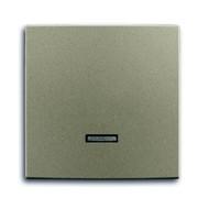 2CKA006599A2993 - Клавиша для светорегулятора 6550 U-10x, 6560 U-101, 6593 U, реле 6401 U-10x, 6402 U, серия Basic 55, цвет шампань