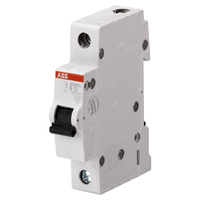 2CDS241001R0065 - Автоматический выключатель 1P SH201L B6